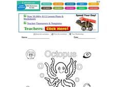 O is for Octopus: The Letter O Worksheet