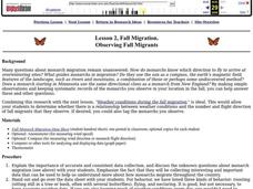 Observing Fall Migrants Lesson Plan