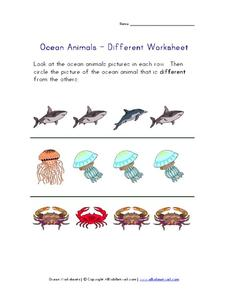 Ocean Animals - Different Worksheet Worksheet