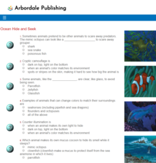 Ocean Hide and Seek: FCM Quiz Interactive