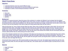 Ocean Zones Lesson Plan