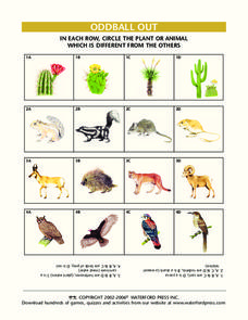 Oddball Out: Plants and Animals Lesson Plan