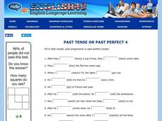 Past Perfect Lesson Plan