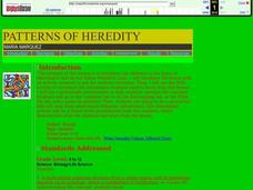 Patterns of Heredity Lesson Plan