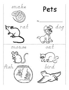 Pets Worksheet