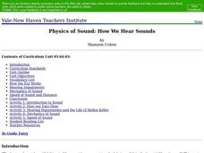 Physics of Sound: How We Hear Sounds Lesson Plan