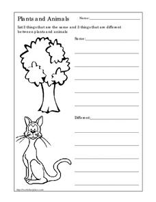 Plants and Animals Worksheet