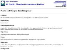 Plants and Oxygen: Breathing Easy Lesson Plan
