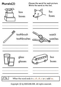 Plural Words Worksheet
