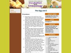 The Egg and I Lesson Plan