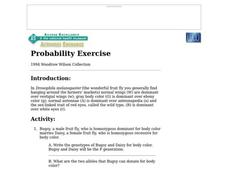 Probability Exercise Worksheet
