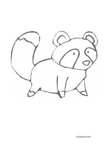 Raccoon Coloring Page Worksheet