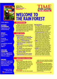 Rain Forest Lesson Plan
