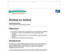 Raising an Animal Lesson Plan