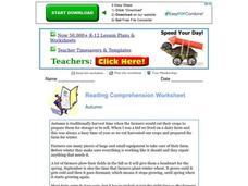 Reading Comprehension Worksheet Worksheet