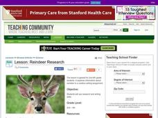 Reindeer Research Lesson Plan