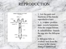 Reproduction Presentation