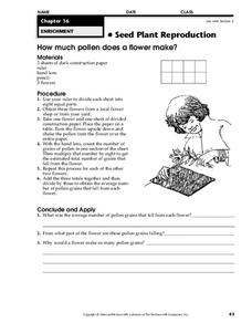 Seed Plant Reproduction Worksheet
