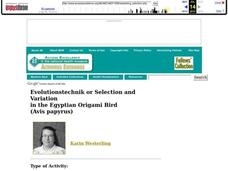 Selection and Variation in the Egyptian Origami Bird Lesson Plan