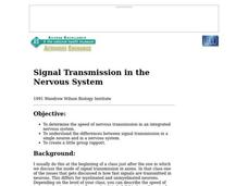 Signal Transmission in the Nervous System Lesson Plan