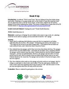 Soak It Up Lesson Plan