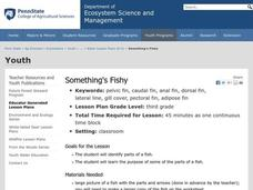 Something's Fishy Lesson Plan
