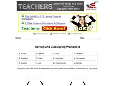 Sorting and Classifying Worksheet Graphic Organizer