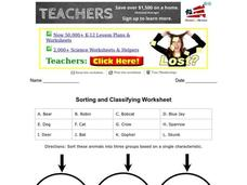 Sorting and Classifying Worksheet Worksheet