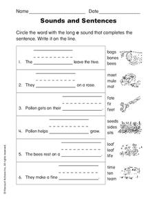 Sounds and Sentences Worksheet