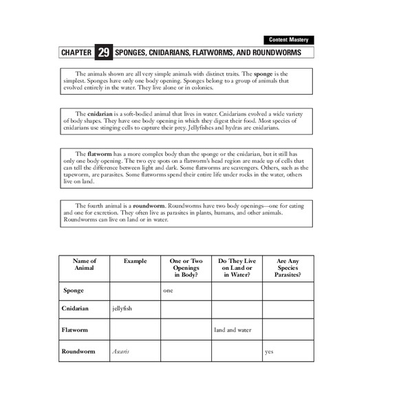 Sponges, Cnidarians, Flatworms, and Roundworms Worksheet
