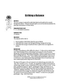 Striking a Balance Lesson Plan