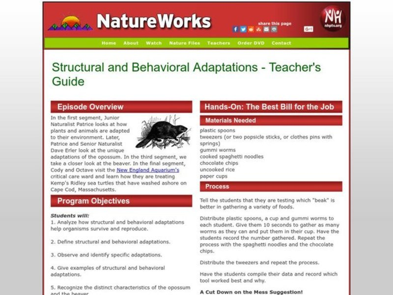 Structural and Behavioral Adaptations Lesson Plan