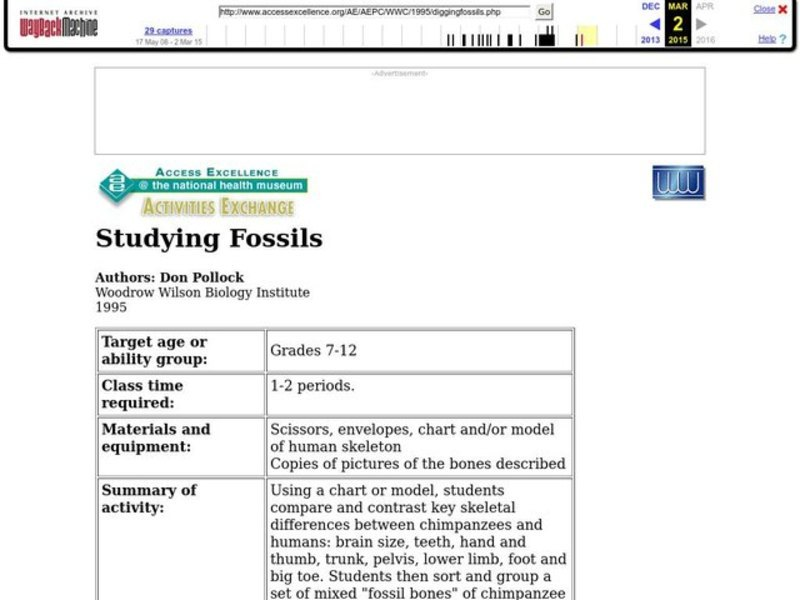 Studying Fossils Lesson Plan