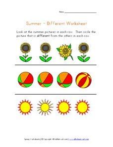 Summer - Different Worksheet Worksheet