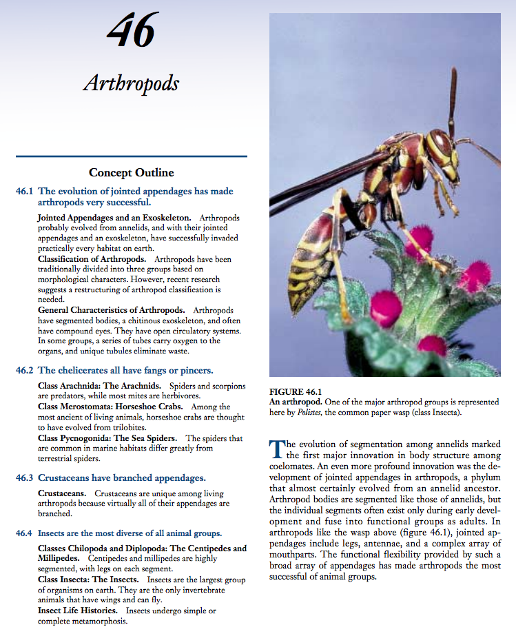 Arthropods Handouts & Reference