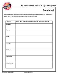 Survivor Graphic Organizer
