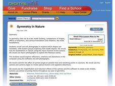 Symmetry In Nature Lesson Plan