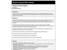 Systems Working Together Lesson Plan