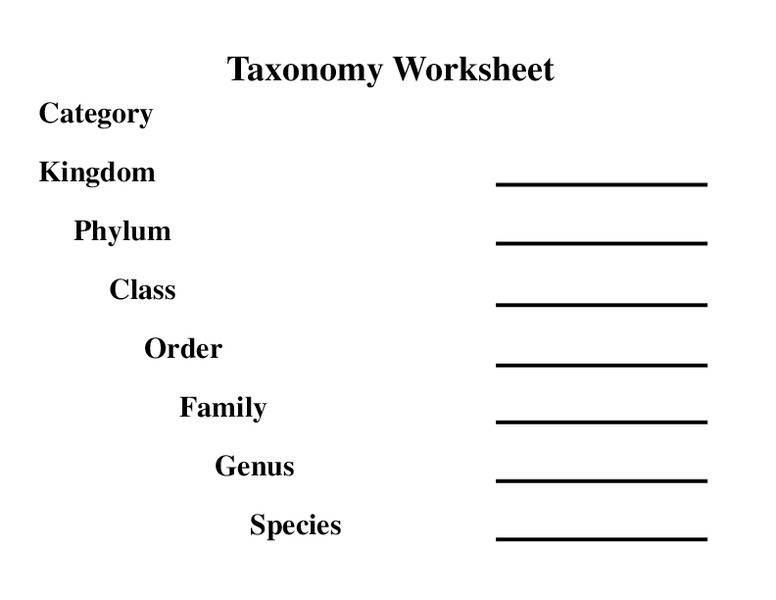 Taxonomy Worksheet 6th 7th Grade Worksheet – Biology Classification Worksheet