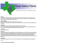 Texas Native Plants Lesson Plan