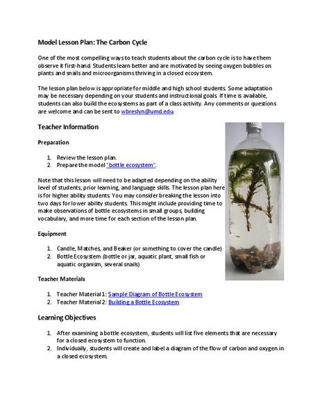 Biogeochemical Cycles Lesson Plans Worksheets Lesson Planet