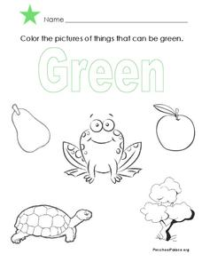 The Color Green Lesson Plan