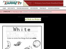 The Color White Worksheet