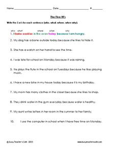 The Five W's Worksheet