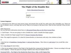 The Flight of the Bumble Bee Lesson Plan