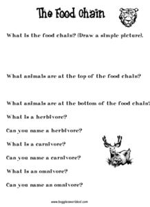 The Food Chain Worksheet