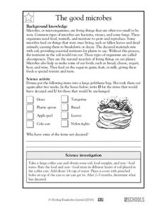 The good microbes Worksheet