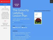 The Grouchy Ladybug Lesson Plan