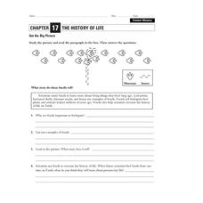 The History of Life Worksheet