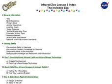 The Invisible Zoo Lesson Plan